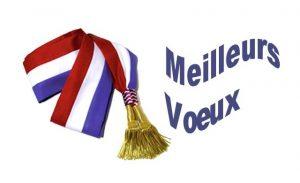 Vœux du maire @ Salle communale | Les Iffs | Bretagne | France